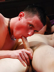 Twinks emo gay porn lads and sexy gay white dudes fucking at EuroCreme