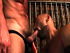 Pounding his hole, filling it up with his rock hard cock free pictures of hot ga at Alpha Male Fuckers